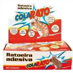 RATOEIRA COLARATO
